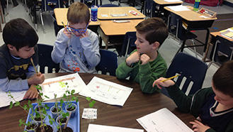 students at table studying plants